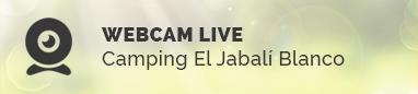 banner-webcam