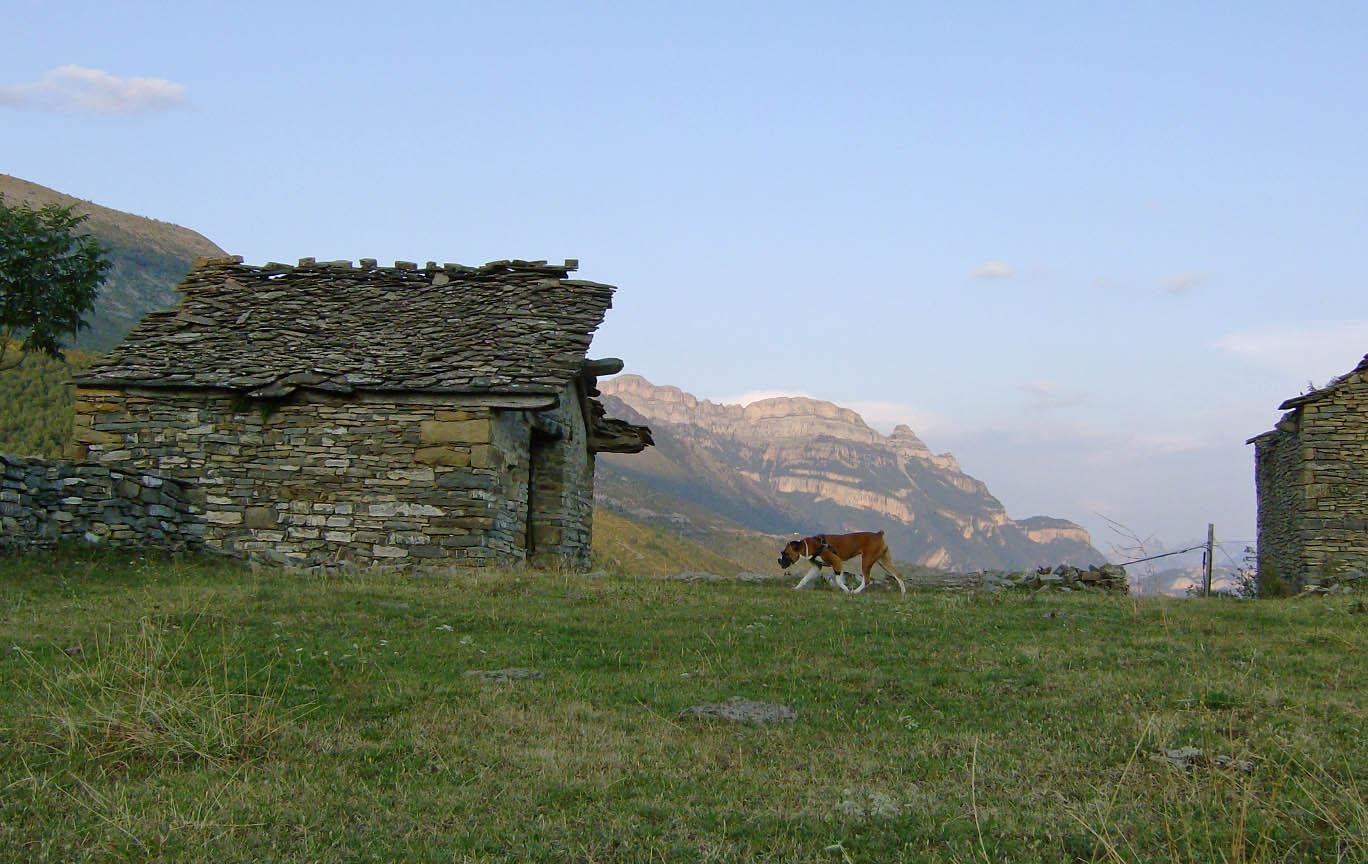 Camping El Jabali Blanco, Valle de ordesa